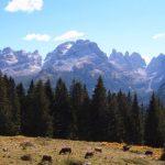 Trentino Alto Adige - Dolomiti di Brenta