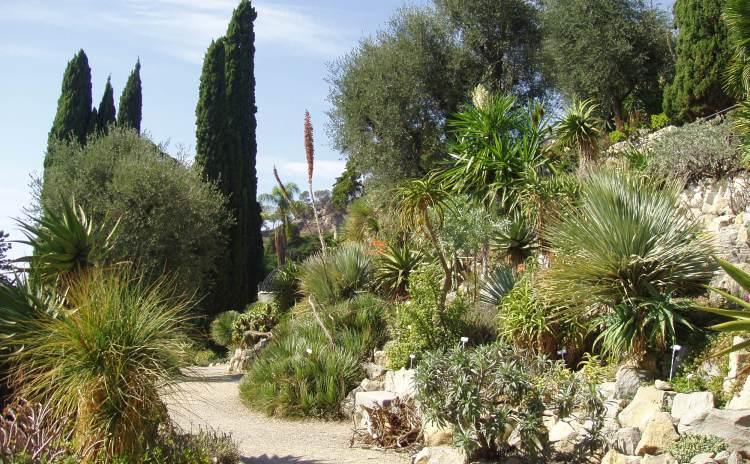 Liguria - Hanbury Garden
