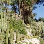 Liguria - Giardini Botanici Hanbury