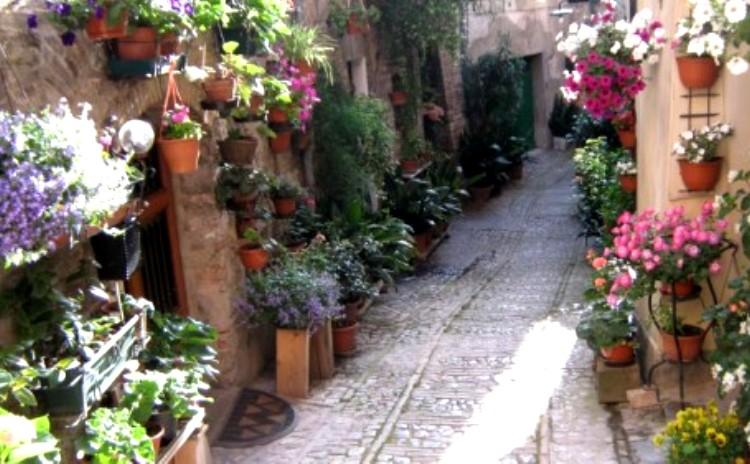 Balconi fioriti. Spello - Umbria