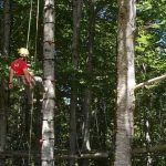 Orme nel Parco - Tree Climbing