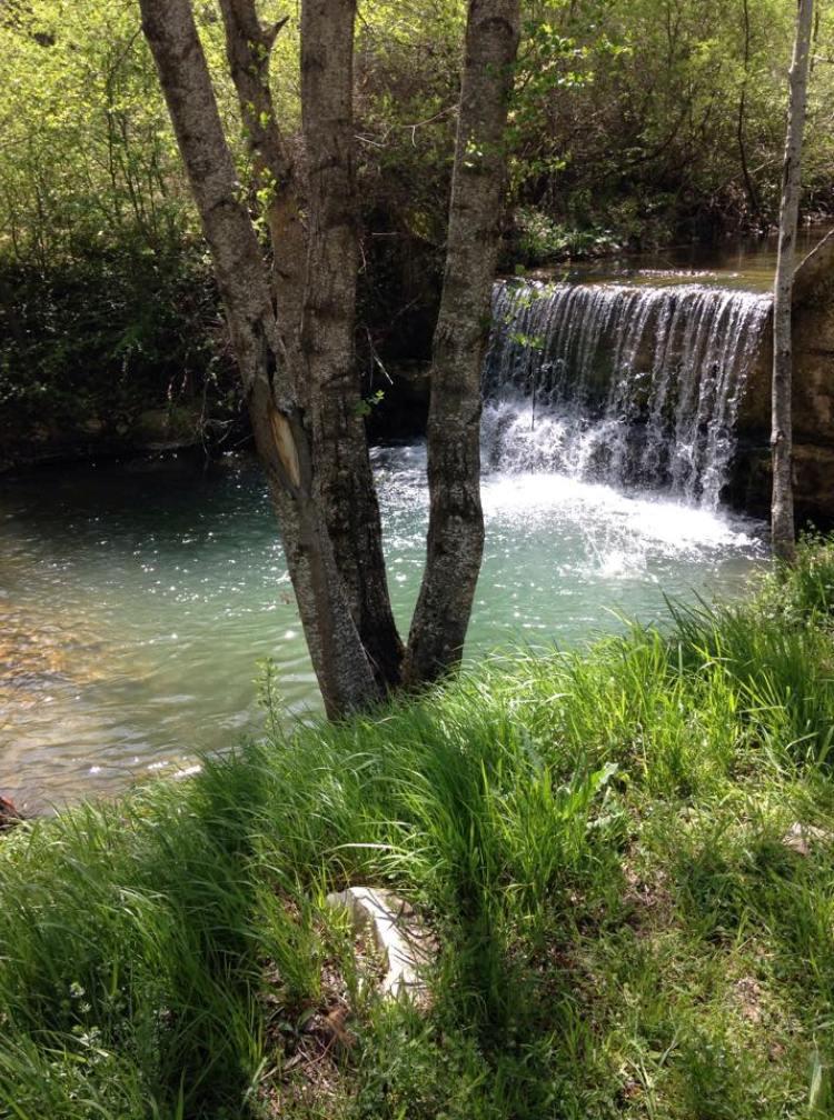 Cascate di san fele uno spettacolo suggestivo nei boschi della basilicata - Cascate in italia dove fare il bagno ...
