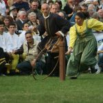 Districts' Palio - Vigevano Italy