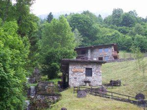 Erbe del Casaro - Val Brembana