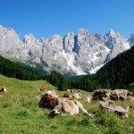 Desmontegar - Primiero Trentino