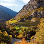 Vins Extremes - Bard Fort - Aosta Valley