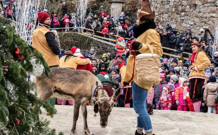 La Grotta Di Babbo Natale.Natale In Piemonte La Grotta Di Babbo Natale Ad Ornavasso