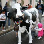 Agrivarese - Varese