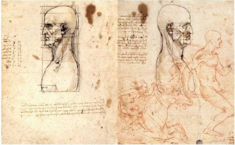 Leonardo da Vinci man as a world model exhibit Venice italy