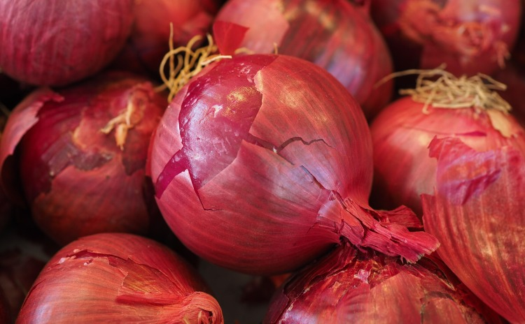 Cipolla Rossa di Certaldo Toscana