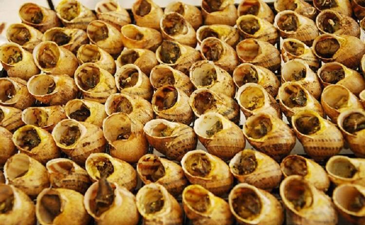 Sagra della Lumaca - Cantalupo di Bevagna