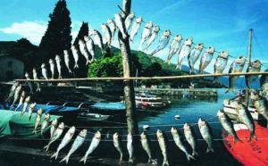 Slow food presidia Lombardia