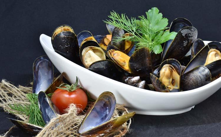 Portonovo wild mussel Marche