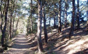 Parco del Conero - Marche