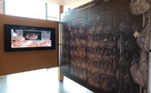 Parma Ham Museum - Emilia Romagna - Italy