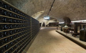 Museo del Vino - Emilia Romagna