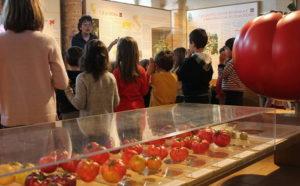 Museo del Pomodoro - Emilia Romagna