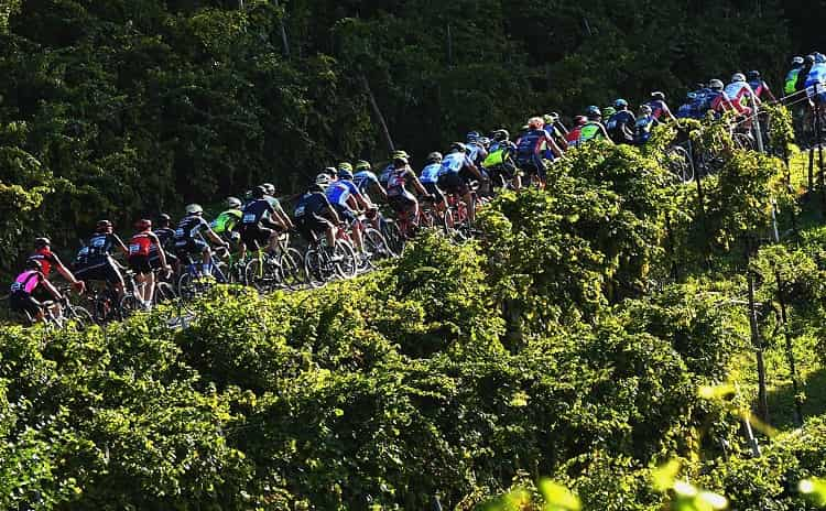 Prosecco Cycling - Veneto