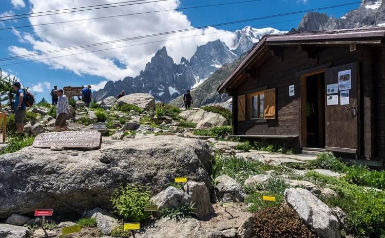 Giardino Saussurea- Valle d'Aosta