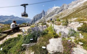 Saussurea Garden- Valle d'Aosta - Italy