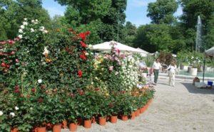Orticola - Lombardia